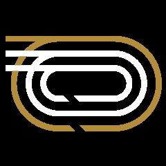Track & Field Icon
